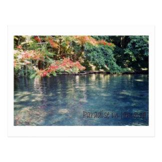 Jamaica Paradise Postcard