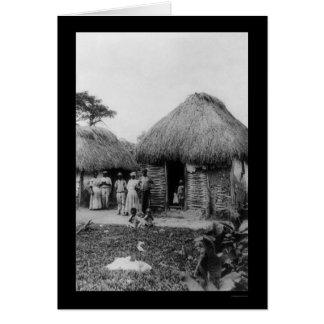 Jamaica Tobacco Plantation 1896 Card