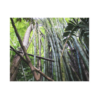 Jamaican Giant Bamboo Canvas
