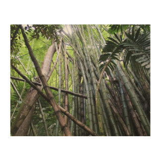 Jamaican Giant Bamboo Wooden Wall Decor