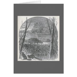 James Johonnot - Beavers and Dam Greeting Card