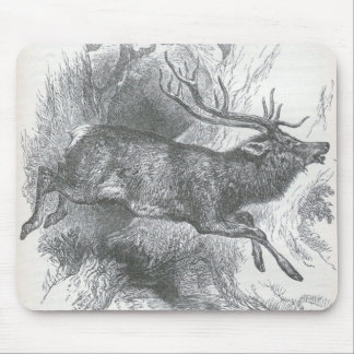 James Johonnot - Stag Mouse Pads