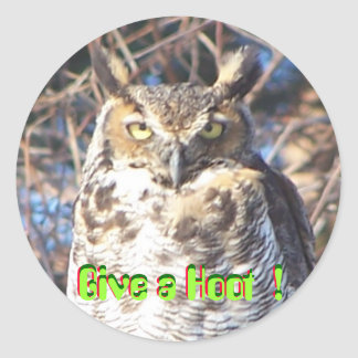 jan112009 009, Give a Hoot  !, Give a Hoot  !, ... Round Sticker