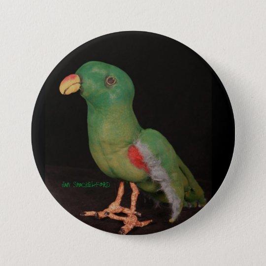 Jan Shackelford Parrot Button Electus