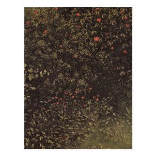 Jan Van Eyck - Flowering shrubs and plants Postcard