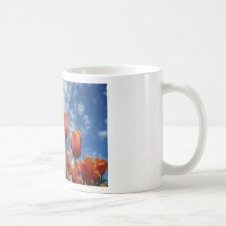 Janesville, Wisconsin Basic White Mug