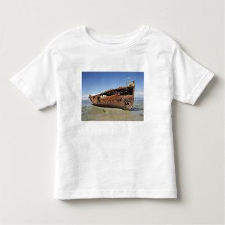 Janie Seddon Shipwreck, Motueka, Nelson T Shirts