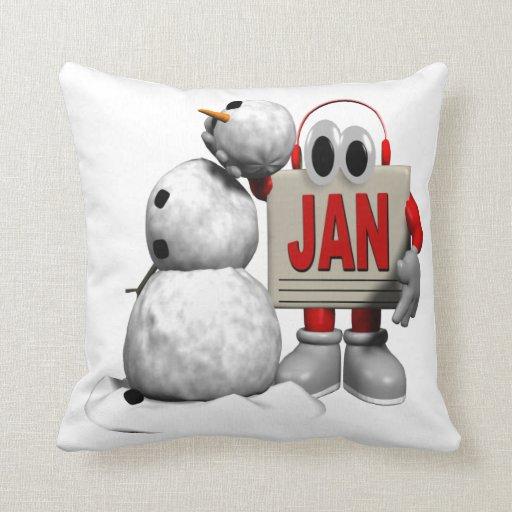 January 6 pillows
