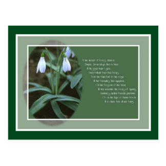 January Snowdrop (With Border) Postcard