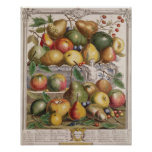 January, 'Twelve Months of Fruits' Poster
