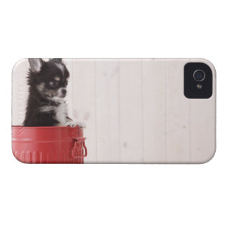 Japan 4 iPhone 4 cases