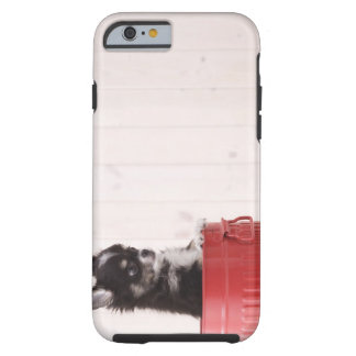 Japan 4 tough iPhone 6 case