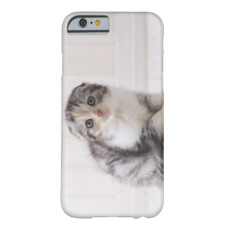 Japan 5 barely there iPhone 6 case