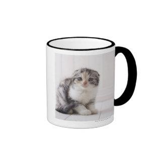 Japan 5 mug