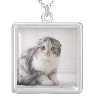 Japan 5 silver plated necklace