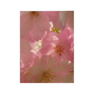 Japan Cherry Flowers Wood Poster