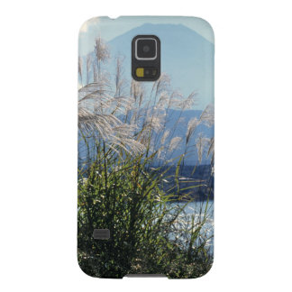 Japan, Honshu, Yamanashi Pref., Fuji-Hakone-Izu Case For Galaxy S5