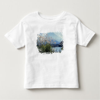 Japan, Honshu, Yamanashi Pref., Fuji-Hakone-Izu Toddler T-Shirt