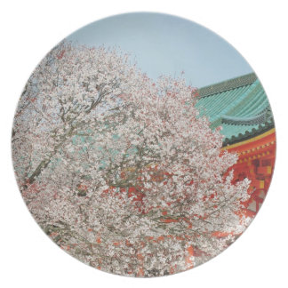 Japan, Kyoto. Cherry blossom of Shinto Party Plates