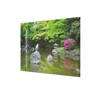 Japan, Kyoto. Heron in fresh green leaves Canvas Print