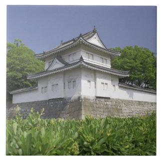 Japan, Kyoto, Nijo Castle Tile