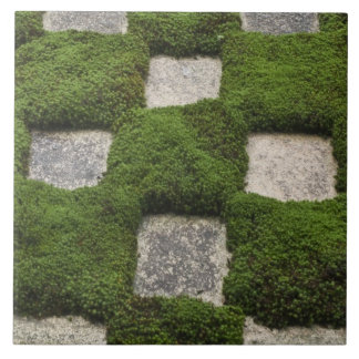 Japan, Kyoto, Tofukuji Temple, Garden Large Square Tile