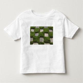 Japan, Kyoto, Tofukuji Temple, Garden Toddler T-Shirt