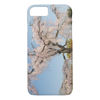 Japan, Kyoto. Weeping cherry tree under blue sky iPhone 7 Case