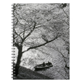 Japan, Tokyo. Cherry blossoms in the Imperial Spiral Note Book