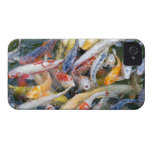 Japan, Tokyo, close-up swimming fish Case-Mate iPhone 4 Cases