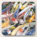 Japan, Tokyo, close-up swimming fish Drink Coasters