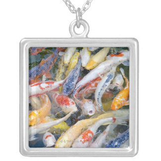 Japan, Tokyo, close-up swimming fish Silver Plated Necklace
