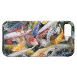 Japan, Tokyo, Nahaufnahmeschwimmenfisch iPhone 5 Cases