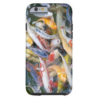 Japan, Tokyo, Nahaufnahmeschwimmenfisch Tough iPhone 6 Case