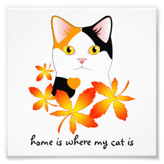 Japanese Bobtail Cat Home Heart Sign Photograph