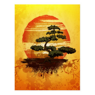 Japanese Bonsai Tree Sunset Postcard