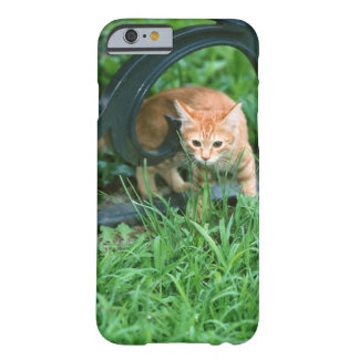 Japanese Cat 3 Barely There iPhone 6 Case