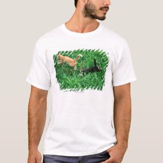 Japanese Cat 3 T-Shirt