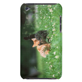 Japanese Cat 4 iPod Touch Cases