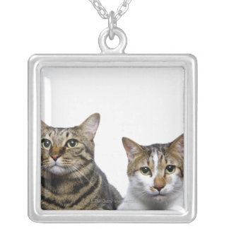 Japanese cat and Manx cat on white background Silver Plated Necklace