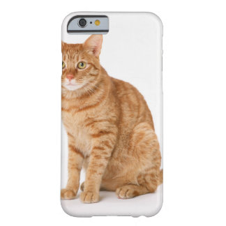 Japanese Cat Barely There iPhone 6 Case