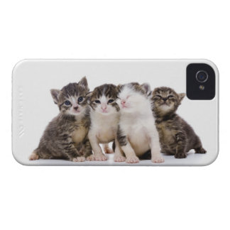 Japanese cat iPhone 4 cover