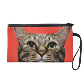 Japanese cat looking up wristlet purse