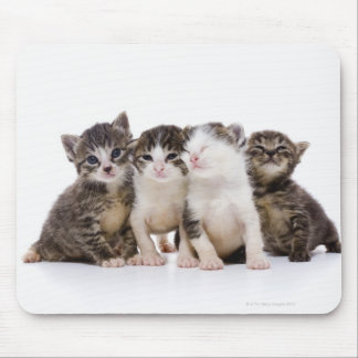Japanese cat mouse mat