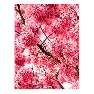 Japanese Cherry Blossom 2013 Post Card