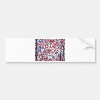 Japanese Cherry Blossom Bumper Sticker