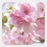 Japanese cherry blossoms 正方形シール・ステッカー