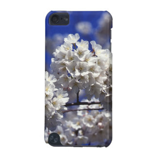 Japanese Cherry Blossoms iPod Touch 5G Case