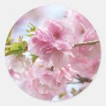 Japanese cherry blossoms round sticker