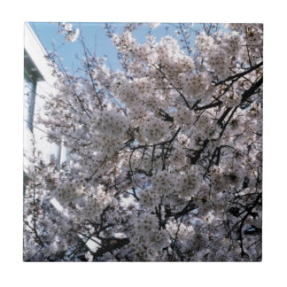 Japanese Cherry Blossoms Sakura Small Square Tile
